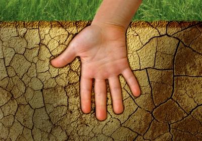 Hand In The Ground by Danilo Rizzuti