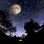 Moon Hovers