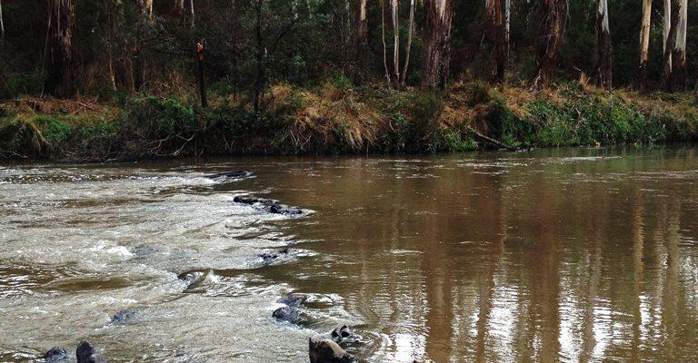 Yarra River in Warrandyte