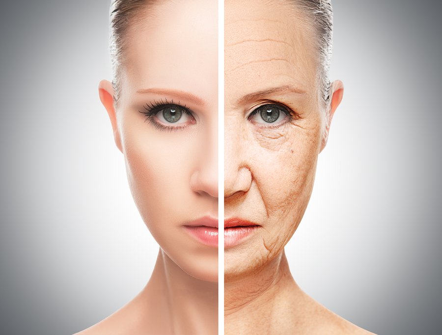 Concept Of Aging