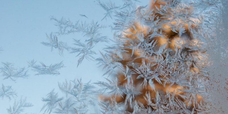 Frosted Veil