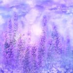 Violet Haze