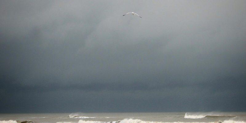 A Grey Sea