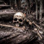 Bones Of Memory